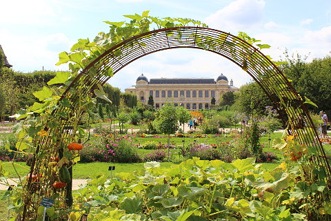 le jardin des plantes a paris garden. Black Bedroom Furniture Sets. Home Design Ideas