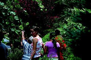 Photo of Jardin aux Plantes la Bouichere
