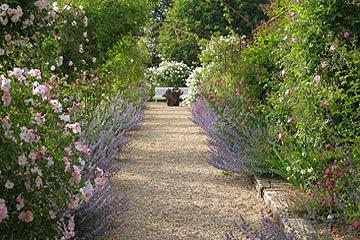 Le jardin de marie a garden in central france for Jardin en france