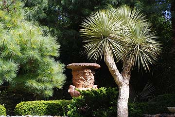 Jardins Agapanthe