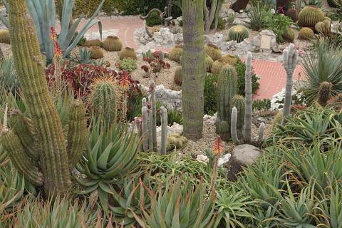 Exotic garden of Eze