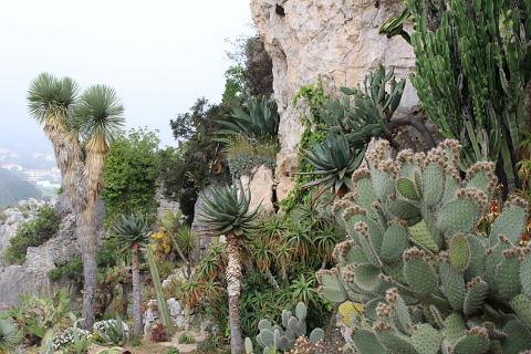 Jardin Exotique d\'Eze, France; a stunning garden overlooking Eze