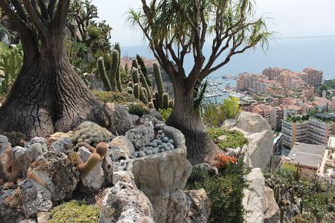 Jardin exotique de monaco - Photo de jardin exotique ...