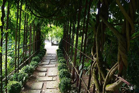 les jardins agapanthe a delightful garden in northern france. Black Bedroom Furniture Sets. Home Design Ideas