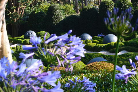 Topiary in the Etretat gardens