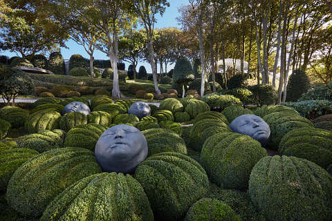 heads in the Jardins d'Etretat