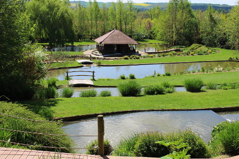 Jardins des martels a botanical garden in south west france for Jardin royal toulouse