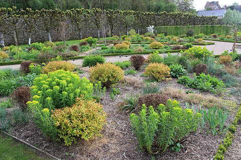 Sun garden at the chateau de Villandry