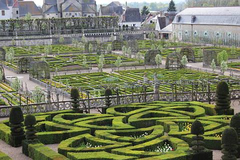 Vegetable garden at the Chateau de Villandry