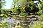 Monets Garden at Giverny