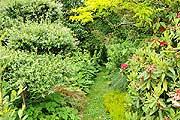L Atelier garden