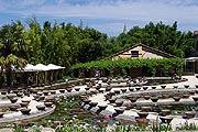 Latour Marliac Le Jardin des Nenuphars