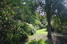 Jardin de Sericourt, a garden in the north east of France