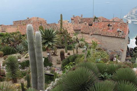 Photo of Jardin Exotique d'Eze in South East