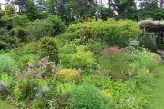 herbaceous-bed
