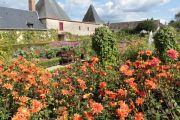 cut-flower-garden