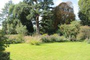informal-garden