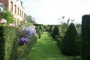 rear-garden2