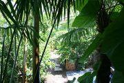 jardin-des-paradis-6