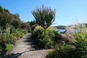 path-lake
