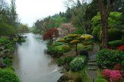 water-garden