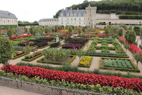Vegetable gardens of the Chateau de Villandry